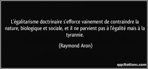 Quote raymond aron