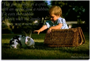 rabbit child