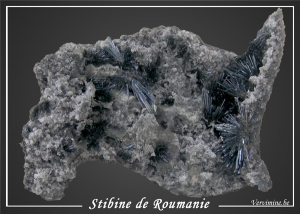 263-stibine-roumanie-600pix