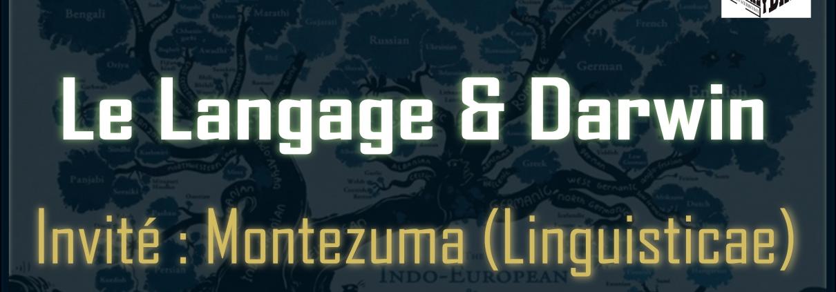 Live#30 Langage (Linguisticae)